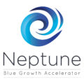 NEPTUNE - New cross sEctorial value chains creation across EuroPe faciliTated by clUsters for SMEs's Innovation in BluE Growth