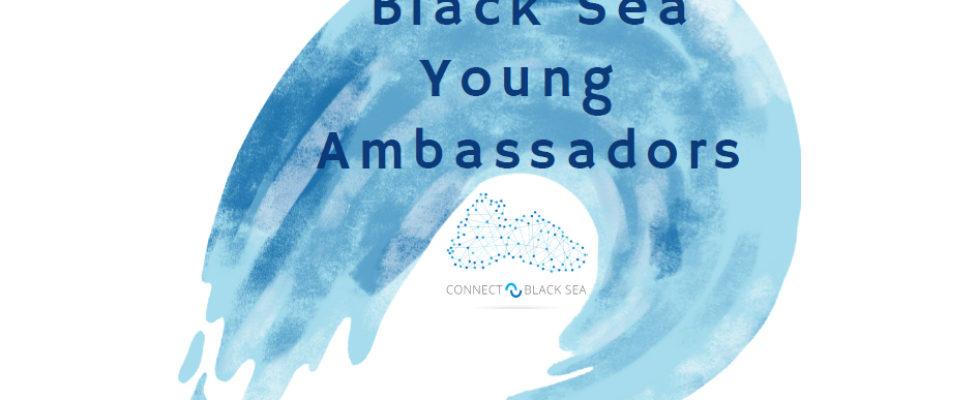 Young Ambassadors