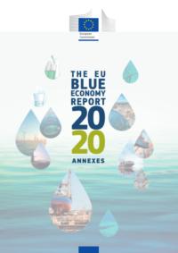 BG Report